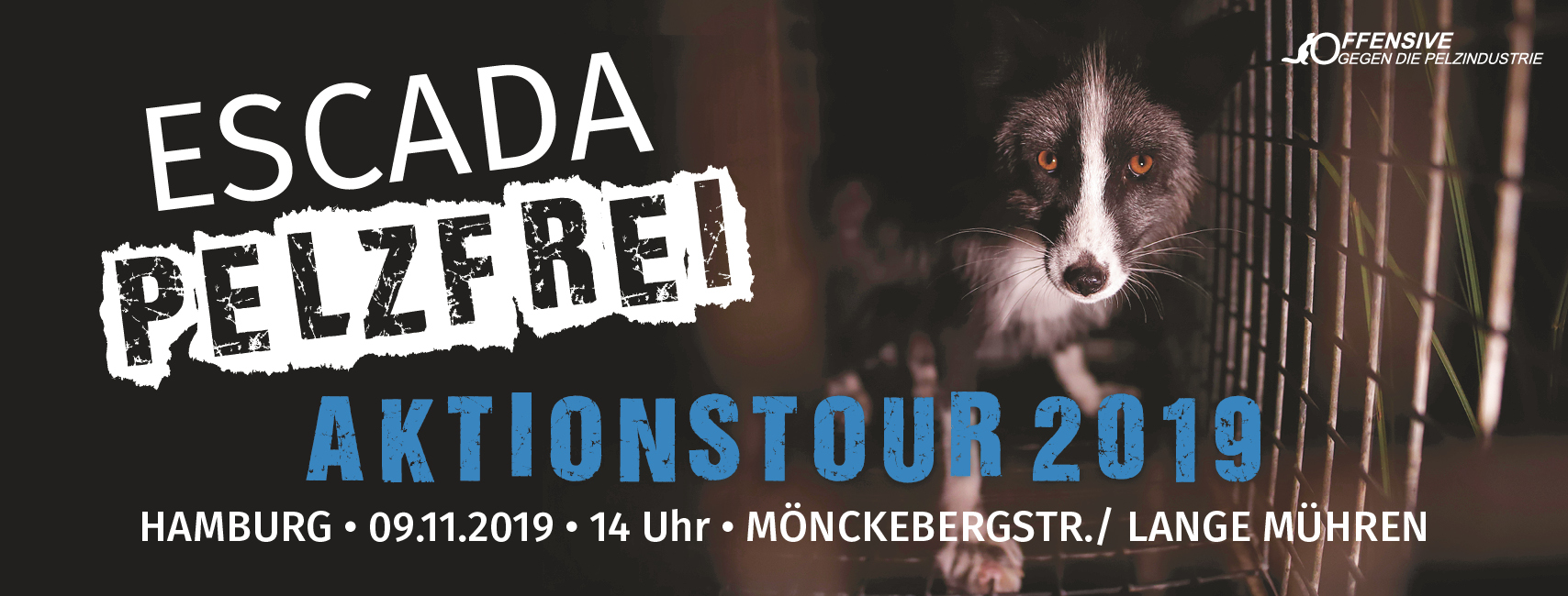 fb_banner_tour_hamburg