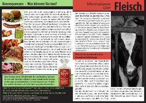 Fleisch-Flyer