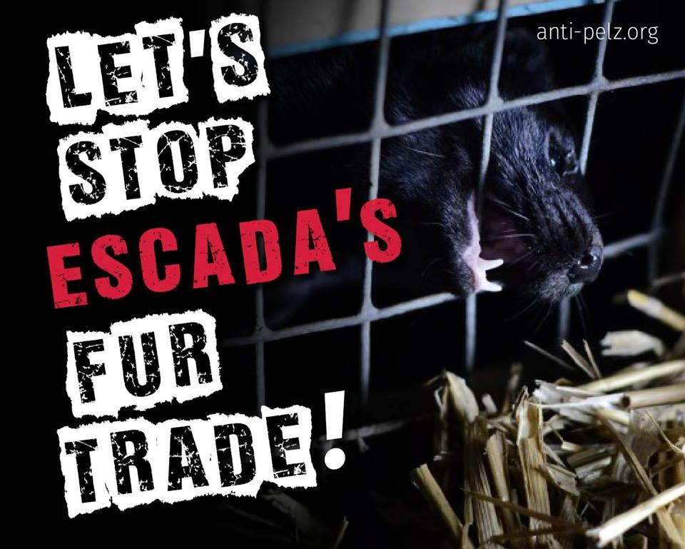 fur_trade_escada