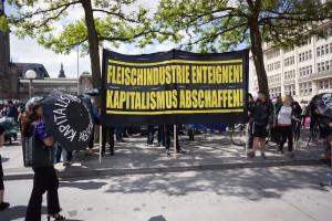 Tierbefreiung goes Blockupy 3