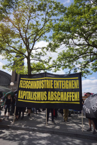Tierbefreiung goes Blockupy 4